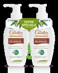 Acheter Rogé Cavaillès Hygiène intime Soin naturel Toilette Intime Sécheresse 2Fl/250ml à Périgueux