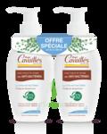 Acheter Rogé Cavaillès Hygiène intime Soin naturel Toilette Intime Anti-bactérien 2Fl/250ml à Périgueux